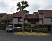 105 Heron Marsh Drive Unit 47, Pawleys Island image
