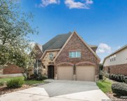 24026 Briarbrook Way, San Antonio image