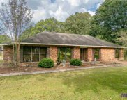33425 Percy Young Rd, Walker image