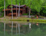 1393  King Road, Pisgah Forest image