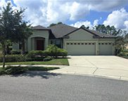 20011 Outpost Point Drive, Tampa image