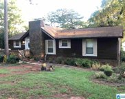 7144 Skyline Dr, Pell City image