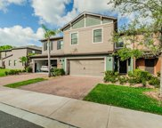 17282 Old Tobacco Road, Lutz image