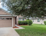 12719 Whitney Meadow Way, Riverview image