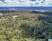 4553 Dolly Ridge Rd Unit 16, Vestavia Hills image