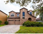 10043 Silver Laurel Way, Orlando image