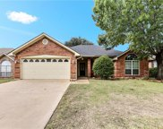 7724 Greengage Drive, Fort Worth image