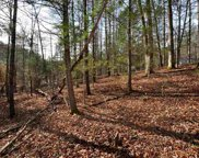 426 Kinzel  Springs Way, Townsend image