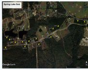 Lot 18 Clear Lake Rd, Perkinston image
