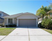 18112 Sandy Pointe Drive, Tampa image