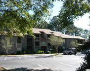 1010 Indian Wells Court Unit 1010, Murrells Inlet image
