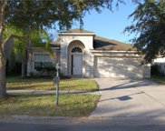 18132 Sandy Pointe Drive, Tampa image