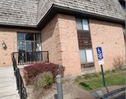1 Oak Creek Drive Unit 3310, Buffalo Grove image