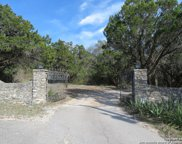 10041 Floore Dr, Helotes image