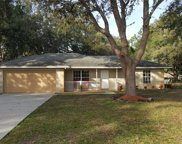 9819 Hasson Ridge Road, Clermont image