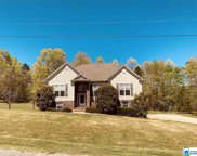 385 Turkey Trail Rd, Odenville image
