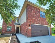 964 Shadow Creek Blvd, Buda image