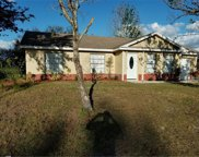 119 Harness Lane, Kissimmee image