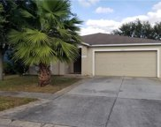 13853 Noble Park Drive, Odessa image