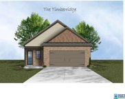 900 Maple Trc, Odenville image