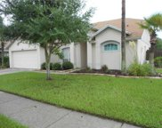 8920 Westbay Boulevard, Tampa image