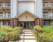 491 South Kalispell Way Unit 301, Aurora image