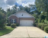 12958 Woodland Park Cir, Mccalla image
