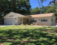 8341 Liman Drive, New Port Richey image