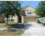 3135 Dasha Palm Drive, Kissimmee image