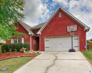 14409 Crooked Stick Place, Athens image