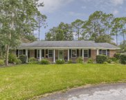 9932 BEAUCLERC TER, Jacksonville image