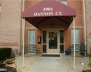 3901 HANNON COURT Unit #F, Baltimore image