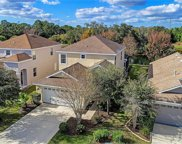 15023 Skip Jack Loop, Lakewood Ranch image