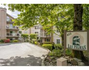 455 Bromley Street Unit 201, Coquitlam image