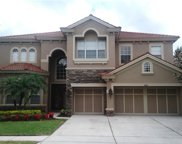 11630 Bristol Chase Drive, Tampa image