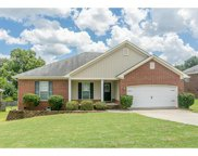 495 Marble Falls Drive, Grovetown image