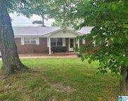 191 Pineview Circle, Blountsville image