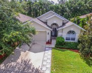 6619 Bluff Meadow Court, Wesley Chapel image