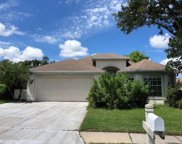 6223 Bobby Jones Court, Palmetto image