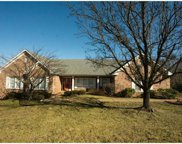 5540 Pine Wood Forest, St Louis image