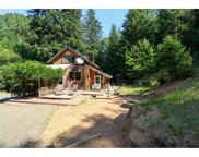 10846 MIDDLE CREEK  RD, Myrtle Point image