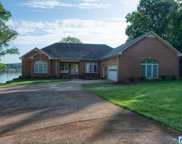 455 Eagle Point Dr, Pell City image