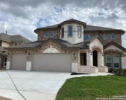 1612 Ironwolf Pass, San Antonio image