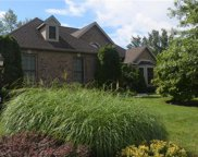 295 Water Lilly, Upper Macungie Township image