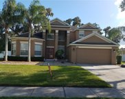 3127 Twisted Oak Loop, Kissimmee image