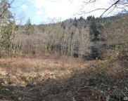 0 Lot 5-8 Old Samish Rd, Bellingham image