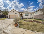 17807 Oxford Mt, Helotes image