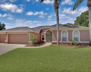 4703 Barn Owl Court, Valrico image