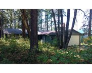 49192 MOUNTAIN VIEW  RD, Oakridge image