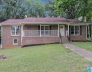 1933 Outwood Rd, Fultondale image
